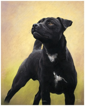 Dog Portrait of Diesel (Patterdale), by Mike Haken, commissioned by Ms. Victoria Bigge. Patterdale Pet Portrait by Mike Haken